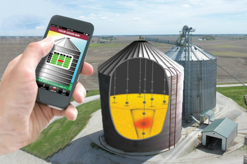 Asked and Answered: Why Monitor Grain Temperature?