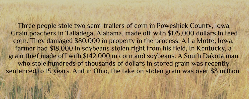 prevent-stored-grain-theft