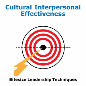 Bitesize Leadership Techniques – Cultural Interpersonal Effectiveness