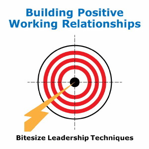 Bitesize Leadership Techniques – Building Positive Working Relationships