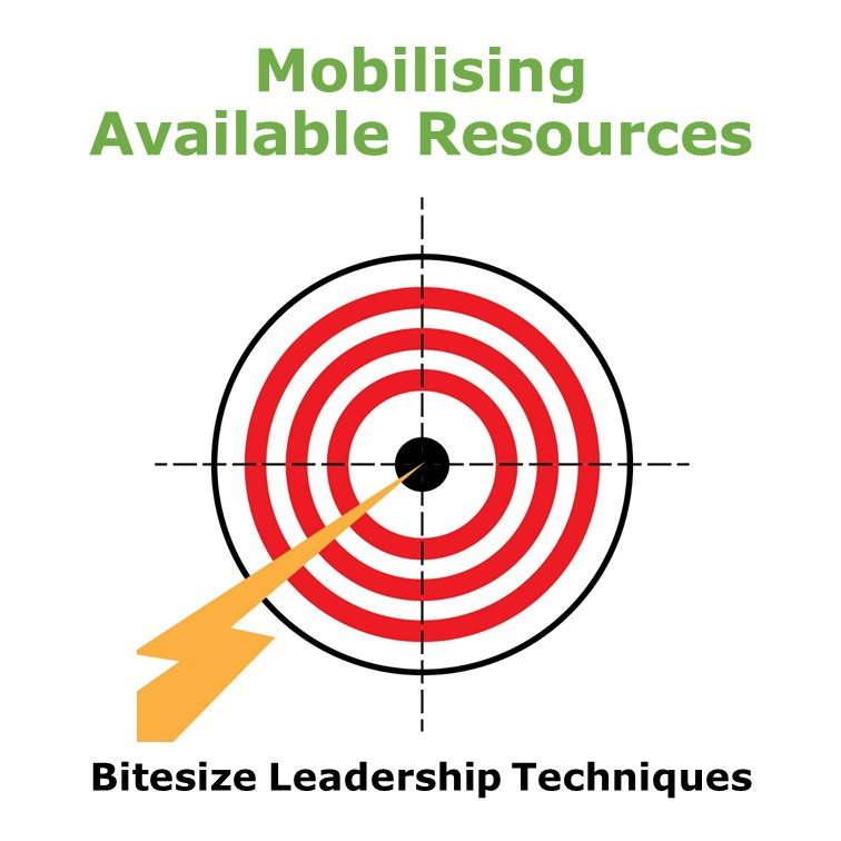 Bitesize Leadership Techniques – Mobilising Available Resources