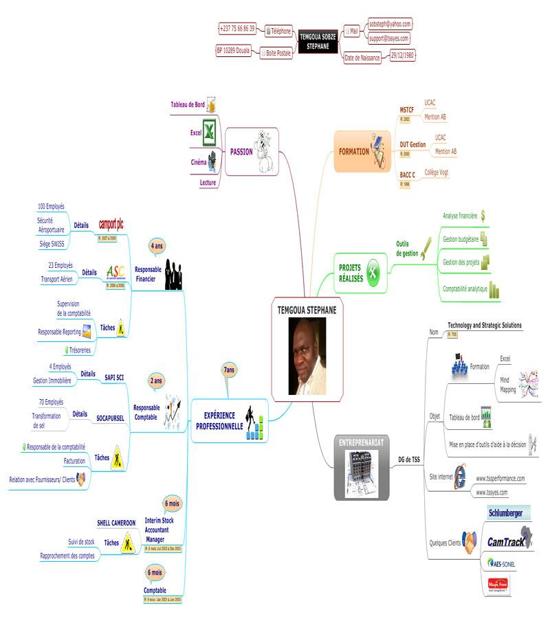 cv en mind mapping