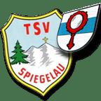 TSV Logo + Wappen - klein - 114x114 - transparent