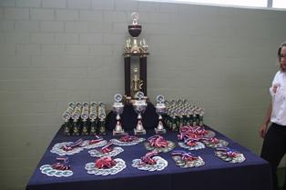 20110622_judocup2011_startseite01