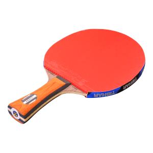 Tischtennisschläger Evolution Spin