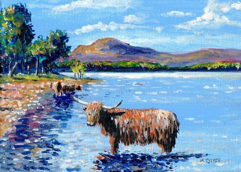 Loch Lomond - Highland Cow