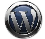 【要保存】WordPressでブログも管理画面も真っ白になった時に最初にすべきこと