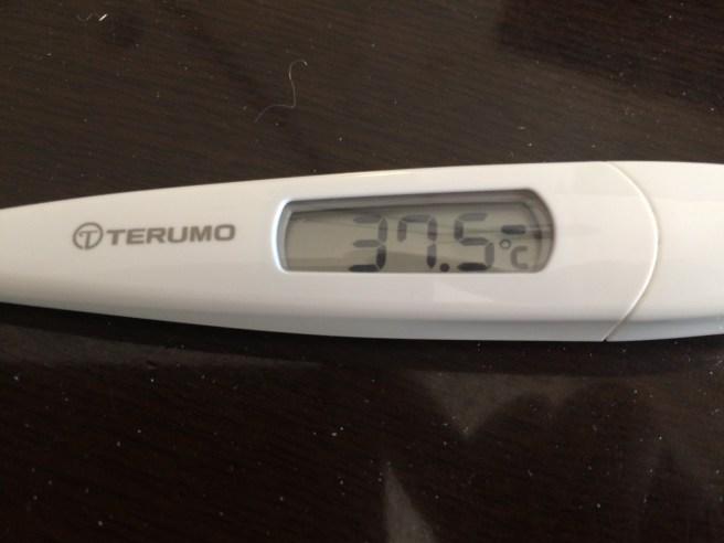 発熱なう — ビタミンCの大量摂取を突破されました。無念。