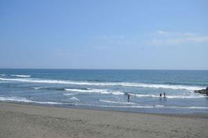 茅ヶ崎の海岸沖にサメ30匹! その時僕たちはまさに茅ヶ崎の海岸で語っていた!!