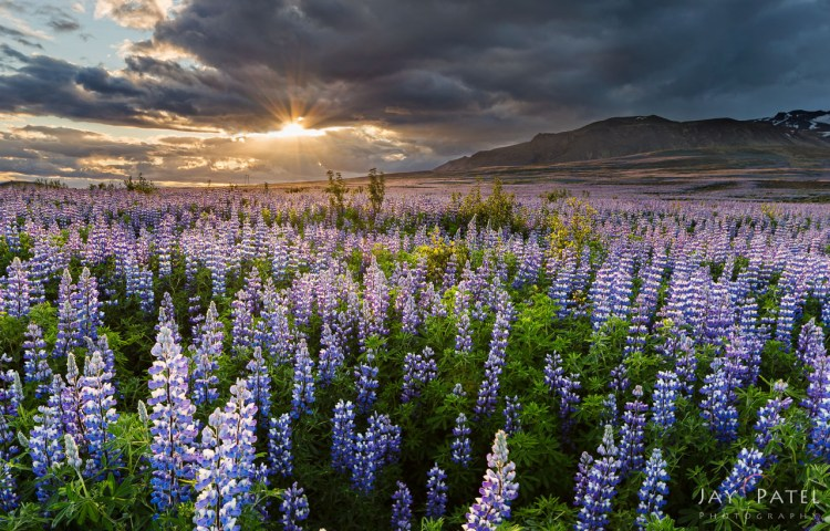 Hof, Iceland