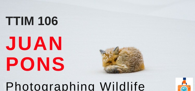 TTIM 106 – Juan Pons and Photographing Wildlife