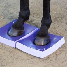 Horse stands on medium Surefoot Pad