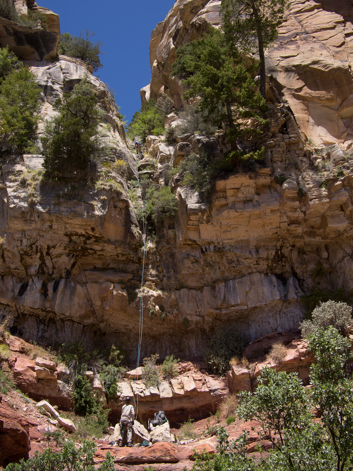 Beautiful rap out of the Coconino and onto the Hermit Shale.