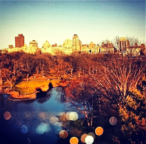 Viola-Vu shared this Instagram photo that she took of NYC.