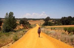 coronavirus viaggi