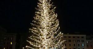 spelacchio albero natale