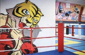 palestra della legalità uomo tigre