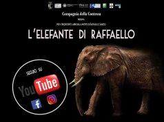 l'elefante di raffaello