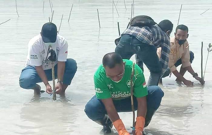 Partai Kebangkitan Bangsa ( PKB ) Kabupaten Maluku Tenggara, Sabtu ( 25/03/2021 ) melaksanakan penanaman ratusan pohon anakan Manggrove ( Bakau ) dan pembersihan sampah plastik di pantai wisata pasir panjang, Ohoi Ngilngof, Kepulauan Kei