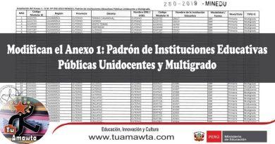 Modifican el Anexo 1: Padrón de Instituciones Educativas Públicas Unidocentes y Multigrado de la R.M. Nº 093-2019-MINEDU