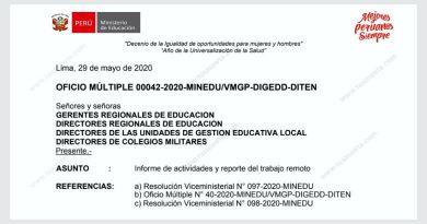 MINEDU: Informe de Actividades y Trabajo Remoto Ref. R.VM. N°098-2020-MINEDU | O.M. 042-2020-MINEDU