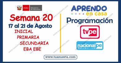 Aprendo en Casa: Programación TV + Radio – Semana 20 [17 al 21 de Agosto]