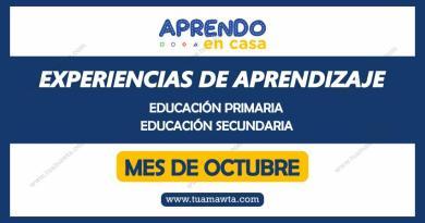 Aprendo en Casa: Experiencias de Aprendizaje – Octubre 2020