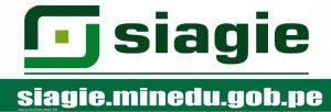 http://siagie.minedu.gob.pe/inicio/