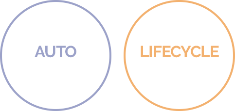auto-discover-lifecycle-icons