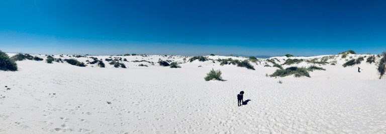 White Sands National Park Panorama