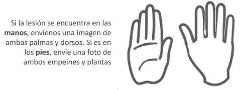 Cómo tomar la fotografía de manos y pies