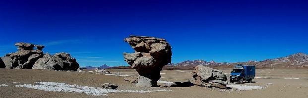 Stone Tree Laguna Route Bolivia