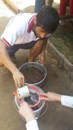 making acai juice