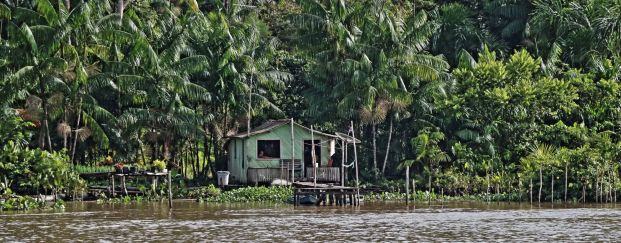 Amazon river village