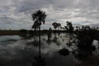 Rupununi Guyana