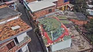 Medellin Roof-top Art
