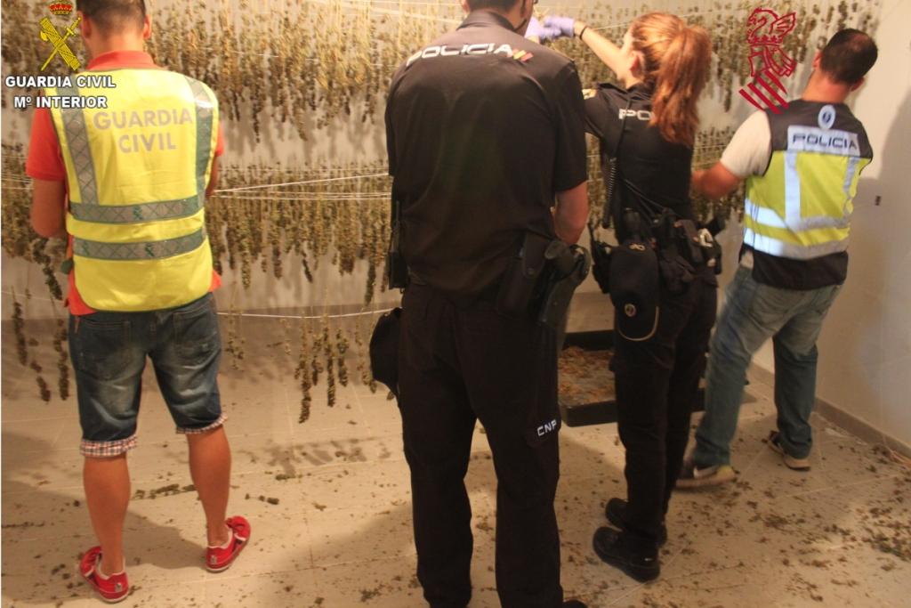 """La Guardia Civil conjuntamente con la Unidad Adscrita a la Comunidad Valenciana del Cuerpo Nacional de Policía en el marco de la operación """"GREENSTREET"""", ha procedido a la detención de una persona y la investigación de otra como presuntos autores de un delito contra la salud publica."""