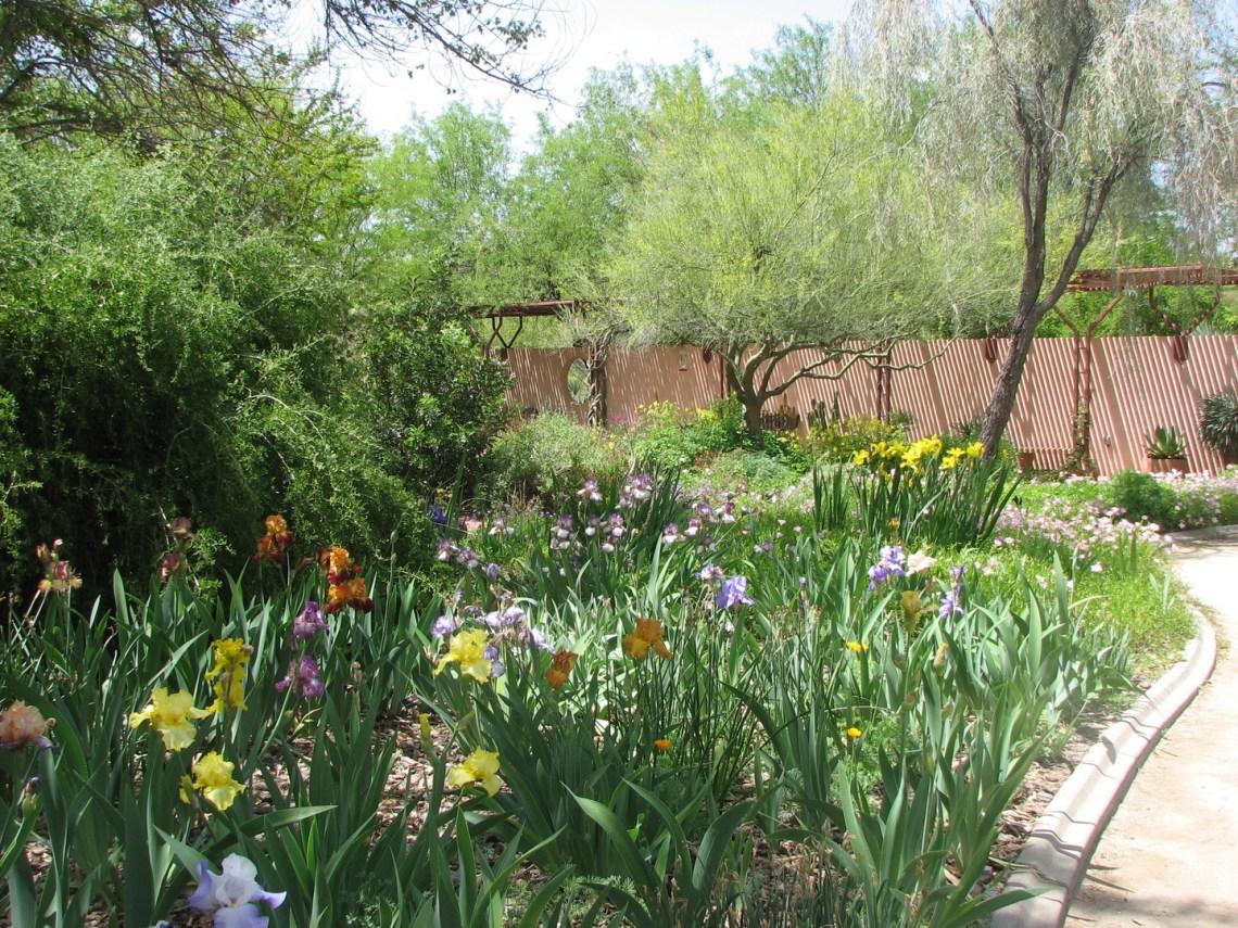 Image Result For Botanical Gardens