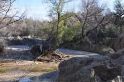 Gabe Zimmerman Davidson Canyon Trailhead-23