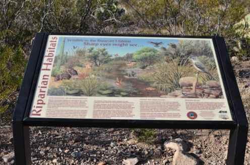 Gabe Zimmerman Davidson Canyon Trailhead-26