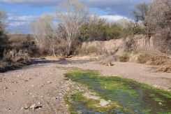 Gabe Zimmerman Davidson Canyon Trailhead-27