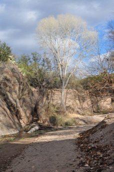 Gabe Zimmerman Davidson Canyon Trailhead-9