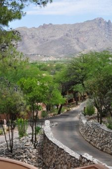 Walkway With A View at Westin La Paloma