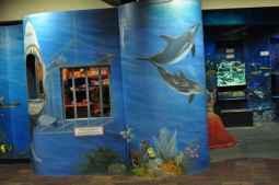 Children's Museum Ocean Discovery Center