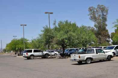 Gene C Reid Park parking lot