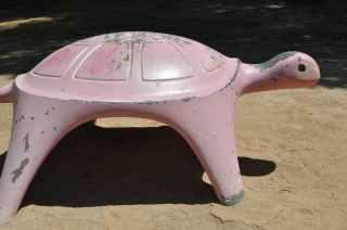 cement turtle at Gene C Reid Park