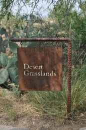 Desert Grasslands at Arizona-Sonora Desert Museum