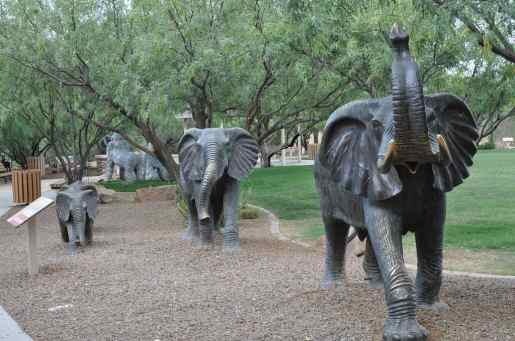 elephant family on Safari Trail