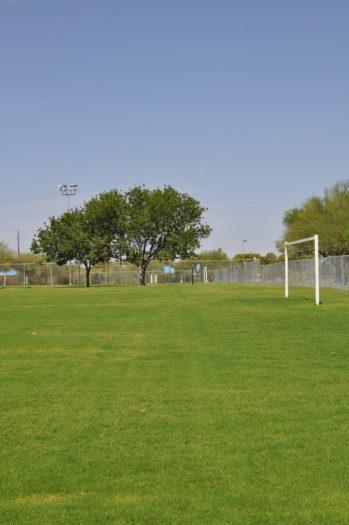 soccer field at Abraham Lincoln Regional Park
