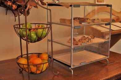 Enjoy-complimentary-fruit-&-pastries-in-between-meals
